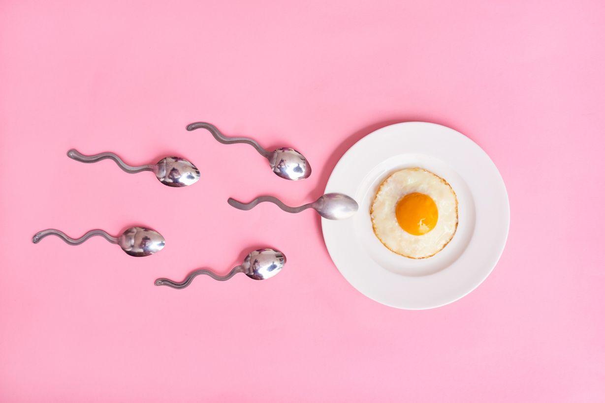 چگونه می توان زمان تخمک گذاری را تشخیص داد؟