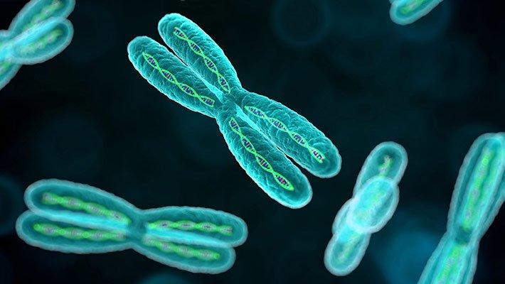 اختلالات کروموزمی به عنوان یکی از دلایل یائسگی زودرس